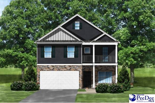 3004 Starling Dr, Effingham, SC 29541 (MLS #20210530) :: The Latimore Group