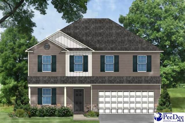 3025 Starling Dr, Effingham, SC 29541 (MLS #20210544) :: The Latimore Group