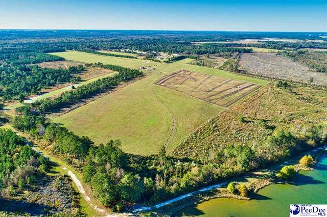 TBD Riverbirch Rd., Bishopville, SC 29010 (MLS #20210573) :: Crosson and Co