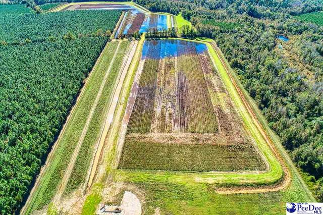 223 Paper Mill Rd., Florence, SC 29506 (MLS #20210589) :: Crosson and Co
