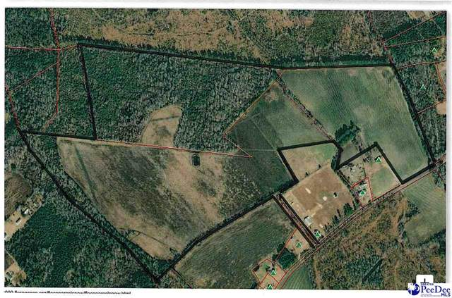 TBD Moulds Rd, Lake City, SC 29560 (MLS #20210622) :: Crosson and Co