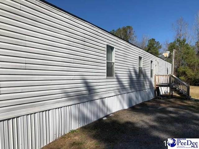 1108 Kindale Park Rd, Kingstree, SC 29556 (MLS #20210677) :: Crosson and Co