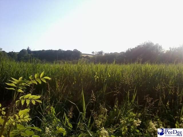 Westfield Rd, Hartsville, SC 29550 (MLS #20210860) :: The Latimore Group