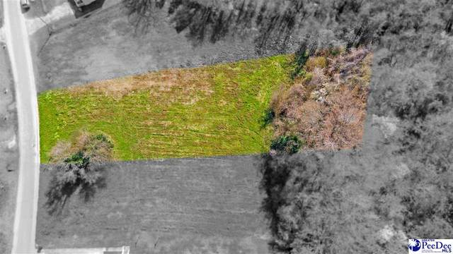Lot 3 S Withlacoochee Ave, Marion, SC 29571 (MLS #20210896) :: Crosson and Co