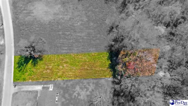 Lot 2 S Withlacoochee Ave, Marion, SC 29571 (MLS #20210897) :: Crosson and Co