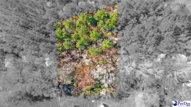 Lot 1 S Withlacoochee Ave, Marion, SC 29571 (MLS #20210898) :: Crosson and Co
