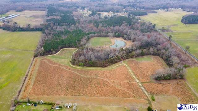1521 Cale Yarborough Highway, Timmonsville, SC 29161 (MLS #20210929) :: The Latimore Group