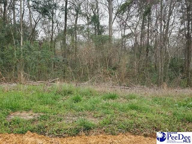 TBD Easterling Circle, Florence, SC 29506 (MLS #20210931) :: Crosson and Co