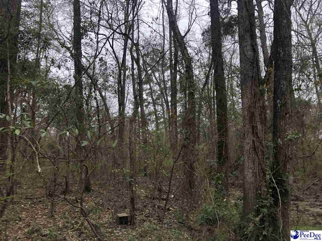 00 Mariposa Drive, Florence, SC 29501 (MLS #20211028) :: Crosson and Co