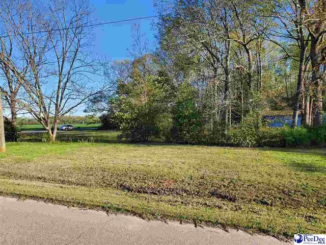 TBD Forest Drive, Bennettsville, SC 29512 (MLS #20211116) :: The Latimore Group