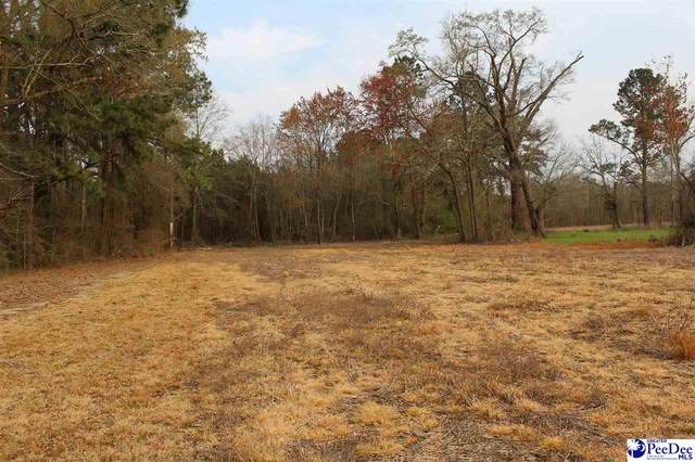 tbd 15.9 acres Hwy 57, Dillon, SC 29536 (MLS #20211132) :: The Latimore Group