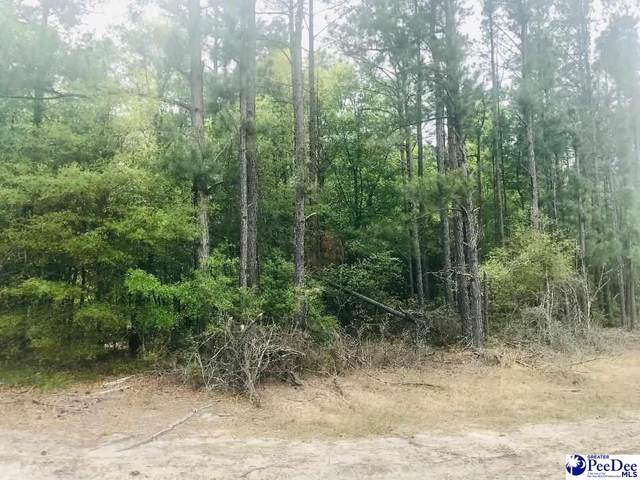 Forest Pl, Marion, SC 29571 (MLS #20211197) :: Crosson and Co