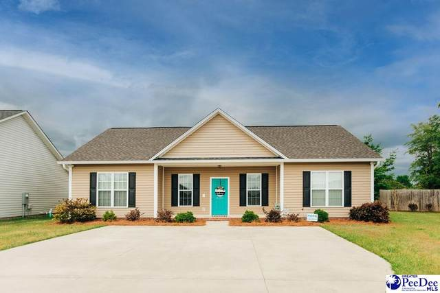 3034 Red Berry Circle, Effingham, SC 29541 (MLS #20211279) :: Coldwell Banker McMillan and Associates