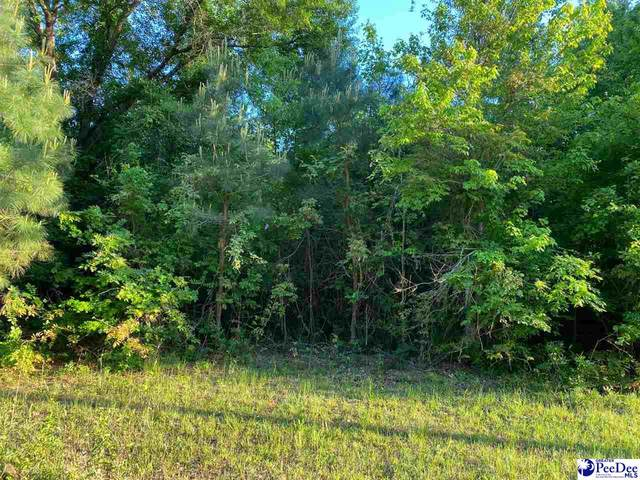 Poor Farm Road, Florence, SC 29505 (MLS #20211322) :: Crosson and Co