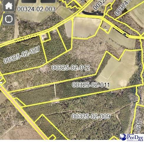 1654 Pond Rd, Pamplico, SC 29583 (MLS #20211343) :: Crosson and Co