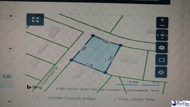 3000 Greenfield Drive, Effingham, SC 29541 (MLS #20211350) :: Crosson and Co