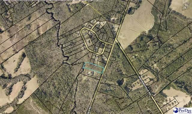 TBD Society Hill Rd, Darlington, SC 29532 (MLS #20211372) :: Crosson and Co