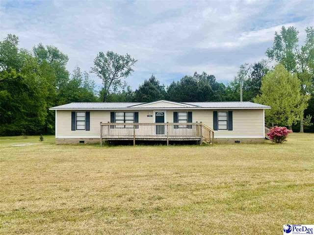 810 Gladys Drive, Hamer, SC 29547 (MLS #20211377) :: Crosson and Co
