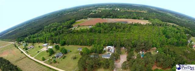 5894 E Marion Hwy, Florence, SC 29506 (MLS #20211411) :: Coldwell Banker McMillan and Associates