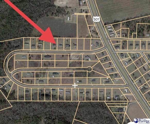 130 Blossom Road, Marion, SC 29571 (MLS #20211419) :: Crosson and Co