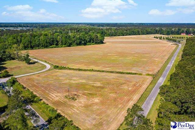 TBD Tj Sod Lane, Conway, SC 29527 (MLS #20211498) :: Crosson and Co