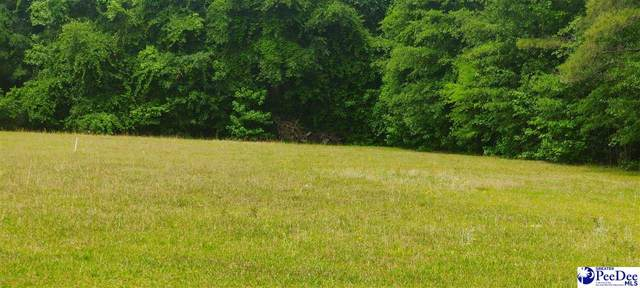 Springview Drive, Darlington, SC 29532 (MLS #20211526) :: Crosson and Co