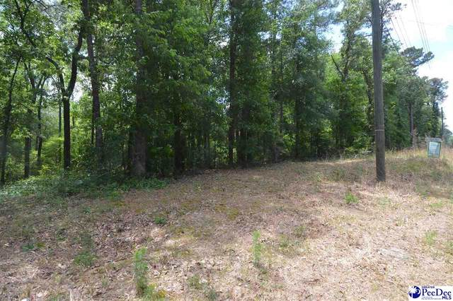 Lots 13 & 14 Golf Course Road, Hartsville, SC 29550 (MLS #20211547) :: The Latimore Group