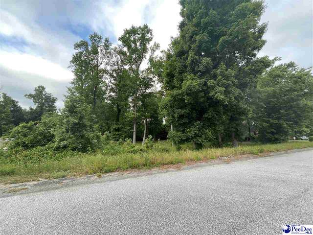 TBD Crickintree Ln, Darlington, SC 29532 (MLS #20211555) :: Crosson and Co