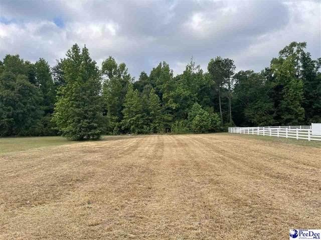 TBD Crickintree Ln., Darlington, SC 29532 (MLS #20211556) :: Crosson and Co