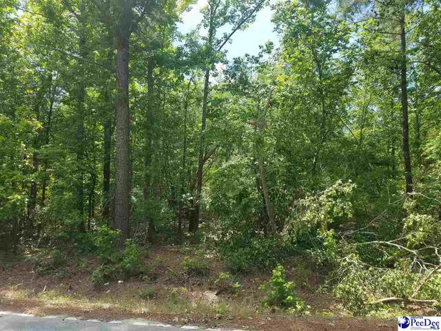 TBD Irby Road, Bennettsville, SC 29512 (MLS #20211564) :: Crosson and Co