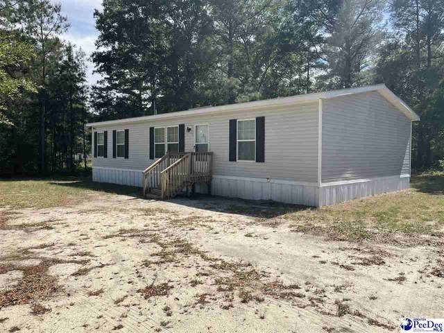 106 Holly Street, Cheraw, SC 29520 (MLS #20211593) :: Crosson and Co