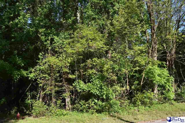 615 Forest Acres Drive, Pamplico, SC 29583 (MLS #20211610) :: Crosson and Co