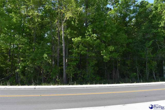 TBD N Pamplico Highway, Pamplico, SC 29583 (MLS #20211622) :: Coldwell Banker McMillan and Associates