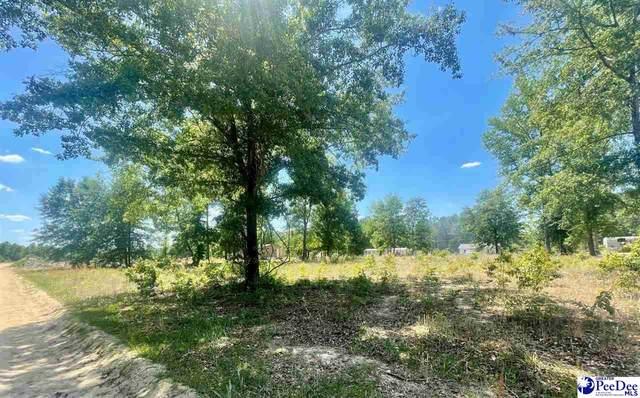 Lot 21 Whispering Pines Court, Hamer, SC 29547 (MLS #20211711) :: The Latimore Group