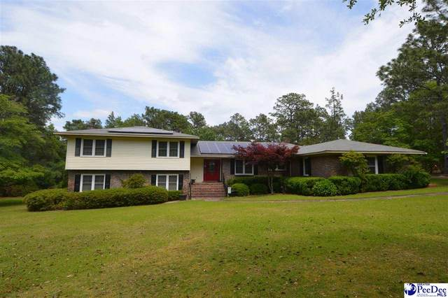 1328 Hollandia Park Circle, Hartsville, SC 29550 (MLS #20211739) :: Coldwell Banker McMillan and Associates