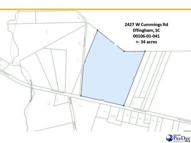 2427 W Cummings Rd, Effingham, SC 29541 (MLS #20211860) :: Crosson and Co