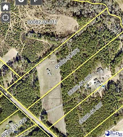 5201 Country Lane, Timmonsville, SC 29161 (MLS #20211918) :: Crosson and Co