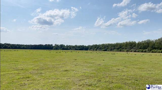 Olanta Hwy., Turbeville, SC 29162 (MLS #20211956) :: Crosson and Co