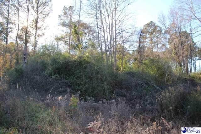 2316 Highway 268, Mount Croghan, SC 29727 (MLS #20211992) :: The Latimore Group