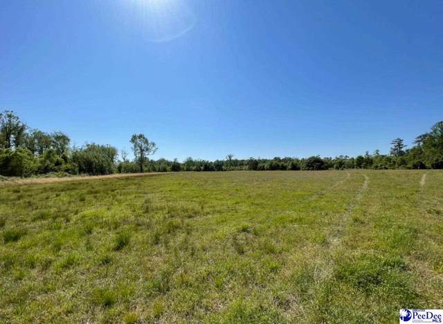 TBA Olanta Hwy., Turbeville, SC 29162 (MLS #20212037) :: Crosson and Co