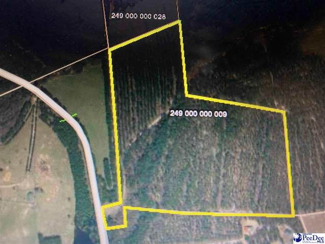 40 acres Jerry Sellers Farm Rd, Patrick, SC 29584 (MLS #20212060) :: Coldwell Banker McMillan and Associates