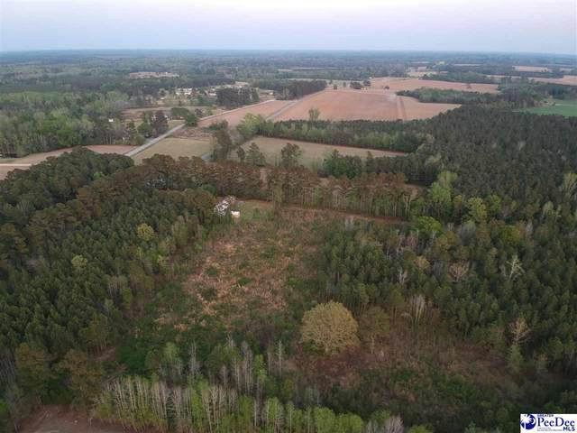 tbd Hwy. 57 South, Dillon, SC 29536 (MLS #20212083) :: The Latimore Group