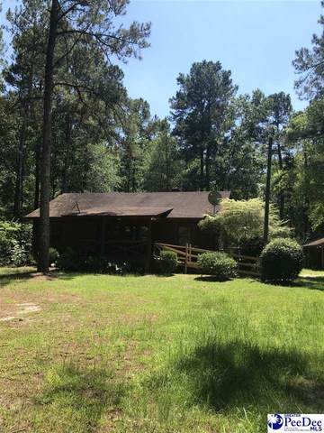 2573 Blowhorn Place, Dillon, SC 29536 (MLS #20212125) :: Coldwell Banker McMillan and Associates