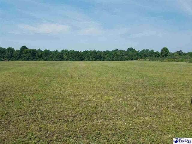 TBD Sulgrave Road, Bennettsville, SC 29512 (MLS #20212126) :: Coldwell Banker McMillan and Associates