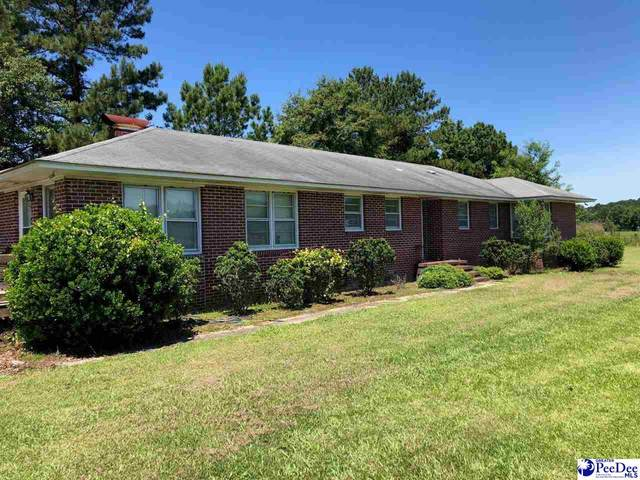 5506 Pamplico Hwy, Florence, SC 29505 (MLS #20212148) :: Crosson and Co