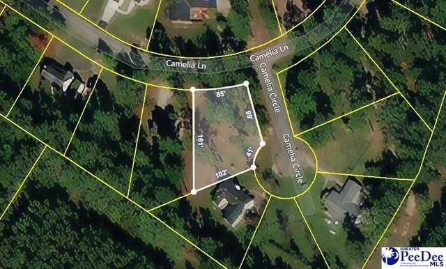 TBD Camelia Lane, Lake City, SC 29560 (MLS #20212274) :: The Latimore Group