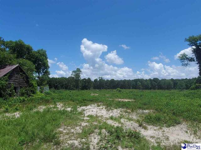 Highway 52 N (16 Acres), Cheraw, SC 29520 (MLS #20212284) :: Crosson and Co