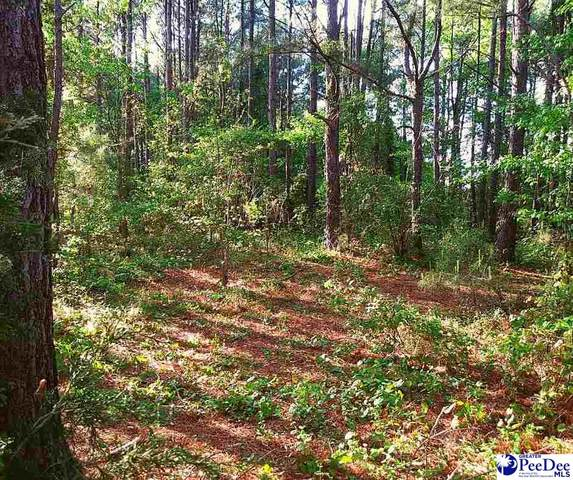 Willie Lear Road, Chesterfield, SC 29709 (MLS #20212286) :: Coldwell Banker McMillan and Associates
