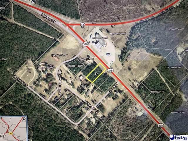 00 Hwy 378, Gresham, SC 29546 (MLS #20212290) :: Crosson and Co