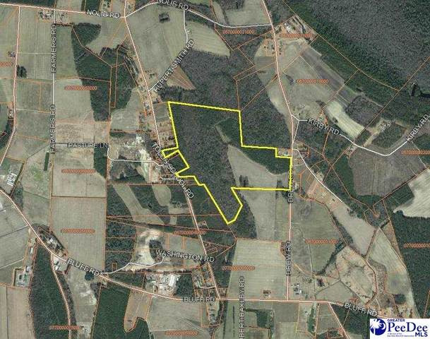 366 Todd School Rd., Mullins, SC 29574 (MLS #20212370) :: Crosson and Co